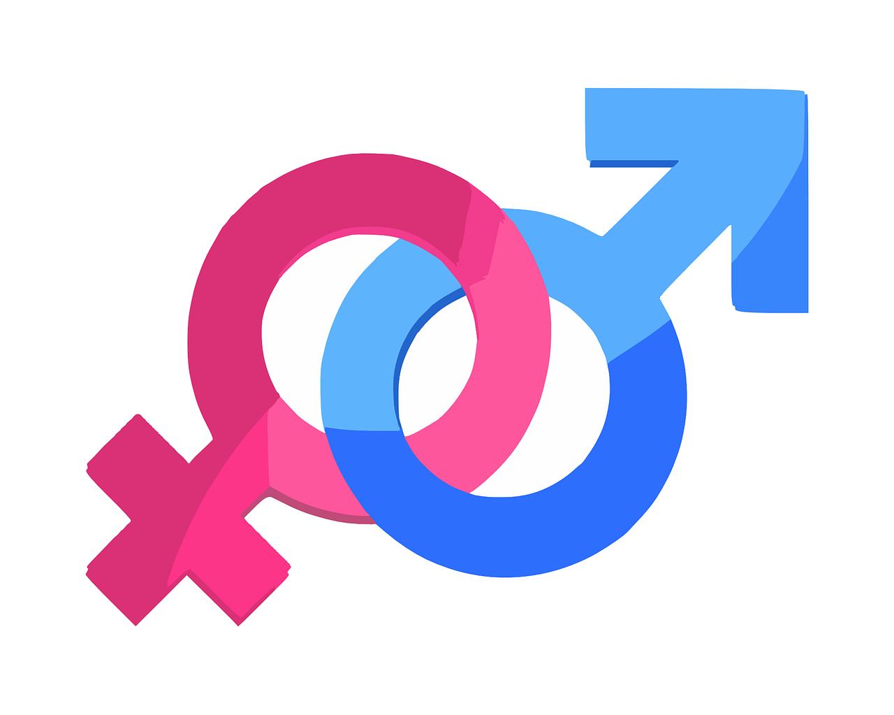 simboli maschio e femmina